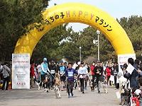http://iishuusyoku.com/image/日本最大級のドッグマラソンイベント「うちの子HAPPYマラソン2019」に特別協賛。8000人を超える来場者を記録しました!