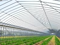 https://iishuusyoku.com/image/農業ハウスを建設する際に必ず設置する機器も多く、ハウスメーカーからの安定的な依頼が続いています。