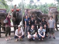 https://iishuusyoku.com/image/社員旅行の写真です!フラットな関係が自慢! 「上下関係が厳しくない」これは、同社の多くの社員が口をそろえて言う言葉です。