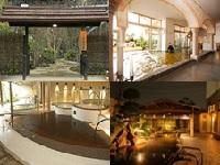 全国で人気の天然温泉SPAや人気温泉施設で導入されている業務システム「湯〜ランド」の開発を手掛けているソフトメーカです。