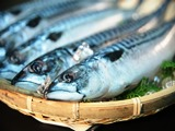 航空輸送による活魚及び生鮮魚介類を 扱っております。世界各地から独自の ノウハウにより顧客のニーズに合わせ た商品の特性や鮮度を損なわず迅速且 つ安定的な供給に徹しております。