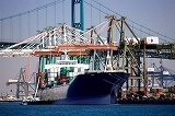 http://iishuusyoku.com/image/貿易部門は自ら積極的に行動していけるバイタリティのある方をお待ちしております。