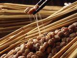 https://iishuusyoku.com/image/日々私たちが食品として摂取する納豆から、血液をサラサラにする成分を取り出します。