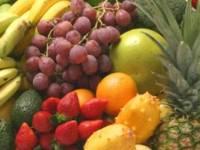 フルーツビジネスをグローバルに展開!輸入フルーツの専門商社!