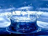 納入した工場近くの川でホタルが復活した例もあるように、水処理から地球の「環境」に貢献しています。