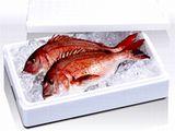 https://iishuusyoku.com/image/漁港の市場やスーパーなどで目にする発泡スチロール。市場のおよそ30%は同社製品が占めています!