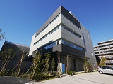https://iishuusyoku.com/image/本社は大田区の自社ビルです。中庭や屋上庭園があったりと緑に囲まれた環境で仕事ができます!