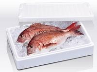 魚の鮮度をしっかりキープ!デリケートな生鮮食品の鮮度保持の面から物流に貢献します。