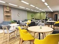 東京本部内にはカフェスペースも設置。ナチュラルなインテリアで、仕事の疲れをリフレッシュできます。