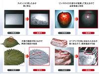 https://iishuusyoku.com/image/スポンジの吸水、大葉の鮮度、リンゴの傷、スペアリブの残骨確認など水分の可視化で検査を可能にしています!