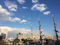 横浜港の歴史と共に発展。時代のニーズに応える品々を日本に紹介しています!