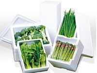 葉物から根菜まで野菜のみずみずしさはもちろん、美味しさと栄養も逃がしません。