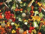 http://iishuusyoku.com/image/酵素は野菜や果物から作られます。季節にふさわしい、最も活力のあるものだけを使用した同社の酵素。