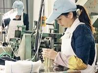 https://iishuusyoku.com/image/中国福建省の自社合弁工場にて丁寧に加工。難しい竹の扱いを熟知し、品質の高い竹串を製造しています。