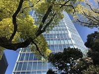 https://iishuusyoku.com/image/東京タワーから近い芝公園にあるタワーオフィスの23階に位置する同社オフィス。見晴らしのよいオフィスで気持ちよく働けます!