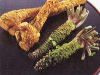 http://iishuusyoku.com/image/輸入わさびは、国内トップシェア!あなたの食べているわさびは同社が開発したものかも!
