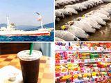 同社の技術は国内外から高い評価を得ており、マグロ漁船、コンビニコーヒーの製氷機、冷凍食品など、さまざまなところで活用されています。