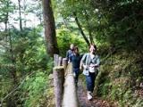 https://iishuusyoku.com/image/去年は社員旅行で屋久島へ。協力して仕事を進めるため社員同士のコミュニケーションも多く、仲も良いです。