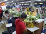 https://iishuusyoku.com/image/海外の生産工場。いち早く東南アジアに拠点展開し、安くて品質の高い製品の生産体制を構築しています。